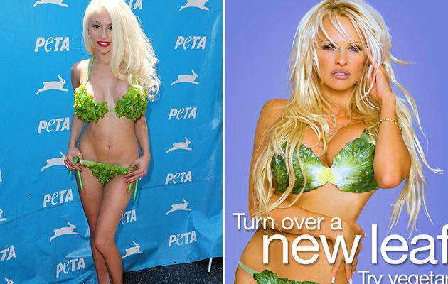 Chef reccomend Pamela lee lettuce bikini