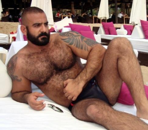 best of Bear Gay male hairy