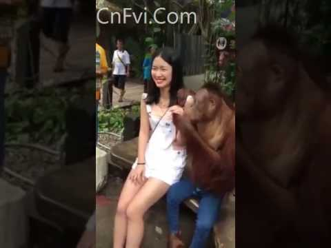 The P. reccomend Asian girl molest