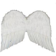best of Wings Hustler feather