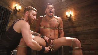 best of Gay Extreme cock tortue