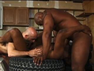 Naked gays hunks cock